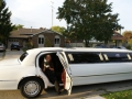 Lincoln Town Car Stretchlimo